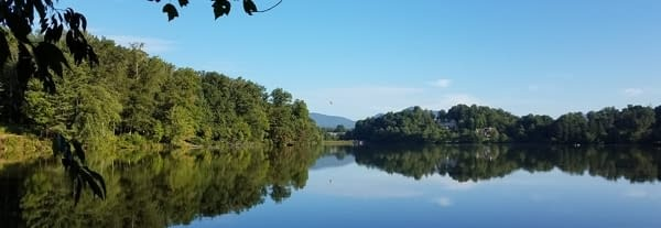 Read more about the article North Carolina Housesit #1 – Tonn's Travels