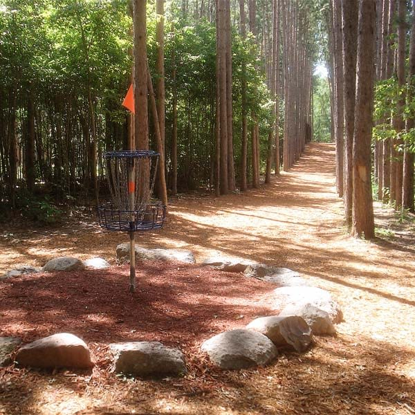 DGA Mach 5 Powder Coated Target in Forested Disc Golf Course